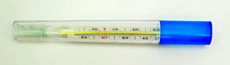 Термометр ртутный медицинский ударопрочный с защитным полимерным покрытием в футляре в Бийске — купить недорого по низкой цене в интернет аптеке AltaiMag